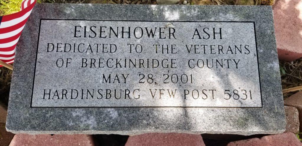 GE Eishenhower Ash 1