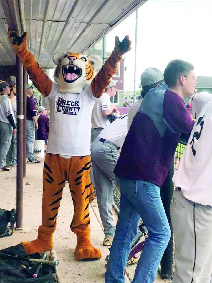 SP Tigers Oboro Baseball Mascot Picture